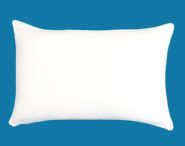 The Good Sleep Expert Big Pillow