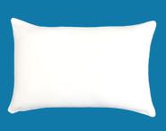 The Good Sleep Expert Big Pillow